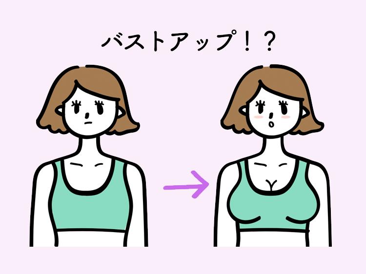 ナイトブラ(育乳ブラ)にバストアップ効果はある?